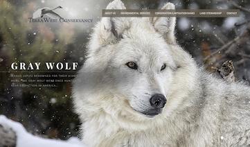 TerraWest Conservancy Website
